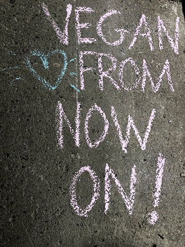 """Blackboard with pink chalk lettering that reads """"Vegan from now on!"""""""